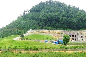 Thanh tra toàn diện việc quản lý, sử dụng đất rừng còn lại tại Sóc Sơn