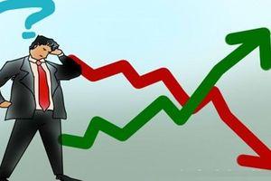 Xuất hiện nhịp rung lắc ngắn hạn, thị trường trở lại trạng thái tích lũy