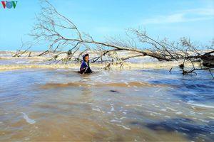 Khốc liệt cuộc chiến giành đất với thủy thần ở Cà Mau