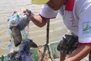 Thích thú cảnh bắt cá phi miền quê cuối tuần