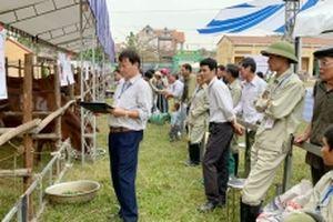 Hà Nội kết nối giao thương, thúc đẩy chăn nuôi