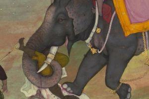Rùng mình quái chiêu tử hình bằng voi thời Trung cổ