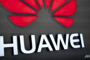 Đức không tìm thấy bằng chứng Huawei làm gián điệp