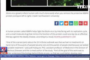 Phát hiện 'lá chắn' chống virus Ebola