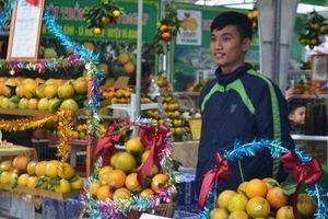 Khai mạc Lễ hội Cam và các sản phẩm nông nghiệp Hà Tĩnh lần thứ 2
