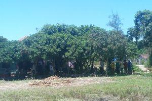 Nghi vấn giám đốc phòng giao dịch ngân hàng treo cổ tự tử trên cây sau nhà