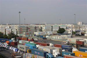 Lô chân gà đông lạnh tồn tại cảng Cát Lái hơn 2 năm xử lý thế nào?