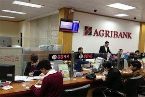 Bố trí nhân sự đảm bảo hoạt động ổn định tại Agribank Đức Lập (Đăk Nông)