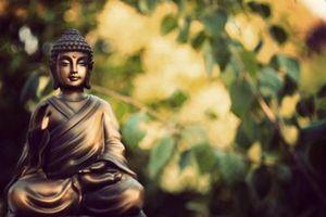 20 lời của Đức Phật giúp bạn tìm thấy hướng đi của cuộc đời