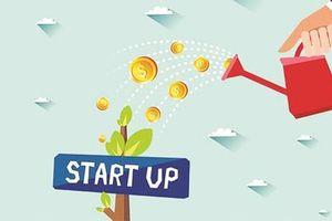 Khó xây dựng hệ sinh thái khởi nghiệp vì doanh nghiệp thiếu lòng tin