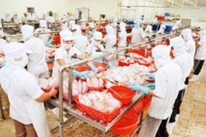Đẩy mạnh khai thác tiềm năng xuất khẩu hàng hóa