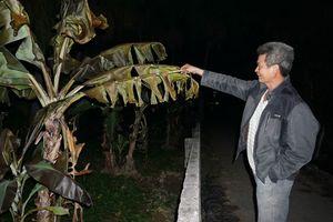 Dân bất an vì cống thoát nước bốc cháy dữ dội sau sự cố tràn dầu ở Thanh Hóa