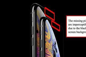 Quảng cáo 'lập lờ' gây hiểu nhầm, Apple bị kiện vì iPhone XS có... 'tai thỏ'
