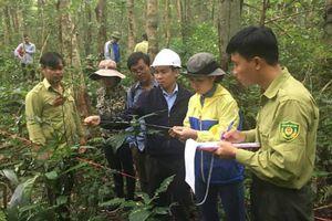 Đẩy mạnh giám sát đa dạng sinh học Vịnh Hạ Long và Quần đảo Cát Bà