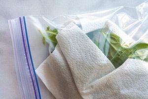 Khăn giấy không chỉ để lau, chúng còn được dùng vào 6 việc này