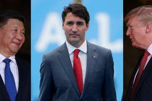 Bị cuốn vào cuộc chiến giữa Mỹ và Trung Quốc, Canada đang phải trả giá đắt