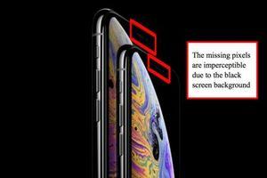 Tưởng iPhone không có 'tai thỏ', người dùng kiện Apple