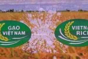 Khai mạc lễ hội Festival Lúa gạo Việt Nam lần thứ III