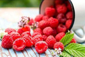 Thực phẩm làm sạch và cực tốt cho phổi