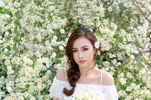 Á Hậu Thanh Trang dịu dàng khoe sắc khi lạc vào rừng Cúc họa mi giữa lòng Hà Nội