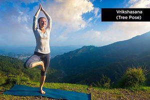 Những tư thế yoga siêu dễ giúp tăng cường miễn dịch mùa đông