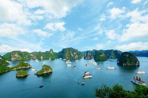 Nâng cao hiệu quả bảo tồn và giám sát đa dạng sinh học Vịnh Hạ Long và Quần đảo Cát Bà