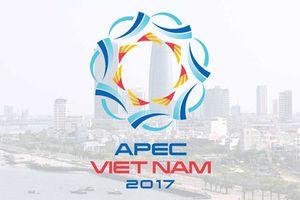 Những dấu ấn APEC 2017 - một năm nhìn lại