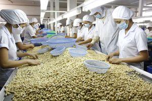 Cơ hội mới cho nông sản Việt thâm nhập thị trường Australia
