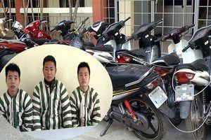 Đánh sập ổ nhóm chuyên trộm cắp và tiêu thụ xe máy liên tỉnh