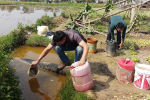 Vụ rò rỉ dầu ở Thanh Hóa: Khắc phục như đùa!