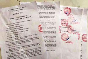 Quảng Nam: Tỉnh 'tạm cấm' xuất nhập khẩu gỗ, DN lo bị phá sản