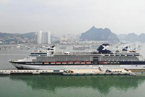 Du thuyền chở vị khách quốc tế thứ 15 triệu cập bến Quảng Ninh