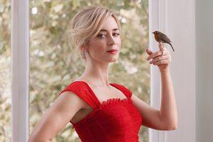 Emily Blunt: Minh tinh xinh đẹp, chăm chỉ bậc nhất Hollywood