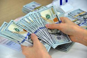 Bắt nữ phóng viên nghi tống tiền doanh nghiệp gần 2 tỉ đồng