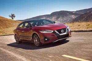 Nissan Maxima mới chốt giá 790 triệu đấu Toyota Avalon