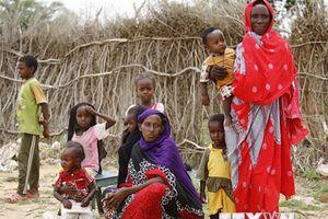LHQ kêu gọi quốc tế tài trợ 2,7 tỷ USD giúp đỡ người tị nạn Nam Sudan