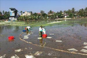 Mất nửa tháng để khắc phục sự cố tràn dầu ở Thanh Hóa