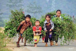 6 triệu người Việt Nam đã thoát nghèo bền vững