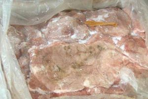 Phát hiện 8 tạ nầm lợn mốc xanh bốc mùi ở Lạng Sơn