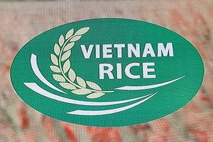 Logo thương hiệu gạo Việt Nam: Khẳng định vị thế hạt gạo Việt trên thị trường thế giới