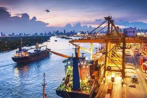 TS. Sudhir Shetty: Việt Nam cần tăng khả năng đối phó về kinh tế vĩ mô