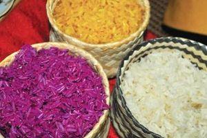 Nức danh hương gạo Mường Thanh (Điện Biên)