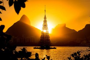 Chiêm ngưỡng những cây thông Noel độc, đẹp trên thế giới