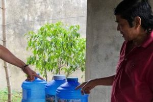 Đại Lộc (Quảng Nam): Chuyện về xã về đích NTM nhưng thiếu nước sạch