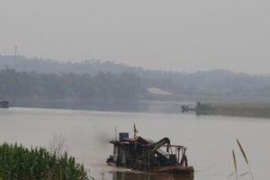 Yên Bái: 'Cát tặc' công khai hoạt động ngày đêm 'bức tử' Sông Hồng