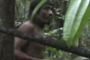 Bị người hiện đại giết, bộ lạc nguyên thủy Amazon sắp biến mất vĩnh viễn