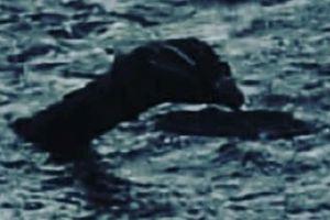 Nhà sử gia Anh tung bằng chứng chứng minh quái vật Loch Ness tồn tại