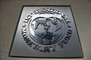 IMF phê duyệt đợt giải ngân cứu trợ mới cho Argentina