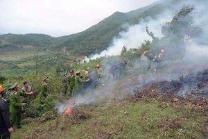 Tam Đường (Lai Châu): Giảm nỗi lo cháy rừng