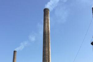 VADFCO: Xây dựng thương hiệu từ nỗ lực bảo vệ môi trường